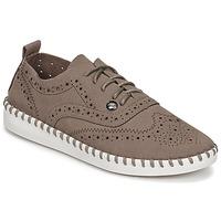 Cipők Női Oxford cipők Les P'tites Bombes DIVA Tópszínű