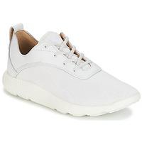 Cipők Férfi Rövid szárú edzőcipők Timberland FLYROAM Fehér