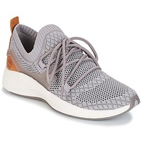 Cipők Női Rövid szárú edzőcipők Timberland FLYROAM GO Szürke