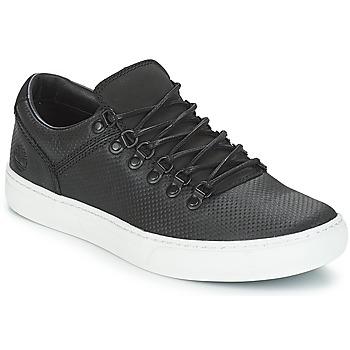 Cipők Férfi Rövid szárú edzőcipők Timberland Adv 2.0 Cupsole Alpine Ox Fekete