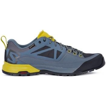 Cipők Férfi Rövid szárú edzőcipők Salomon X Alp Spry Gtx