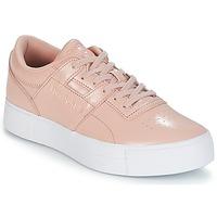 Cipők Női Rövid szárú edzőcipők Reebok Classic WORKOUT LO FVS Rózsaszín