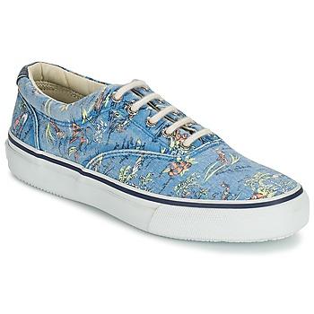 Cipők Férfi Rövid szárú edzőcipők Sperry Top-Sider STRIPER HAWAIIAN Kék