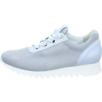 Cipők Női Rövid szárú edzőcipők Paul Green 4627 Białe,Szare