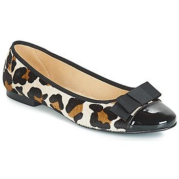 Cipők Női Balerina cipők / babák Betty London JOSSECA Multi