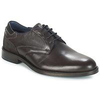 Cipők Férfi Oxford cipők Carlington JECINZA Szürke