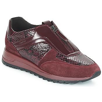 Cipők Női Rövid szárú edzőcipők Geox D TABELYA Bordó