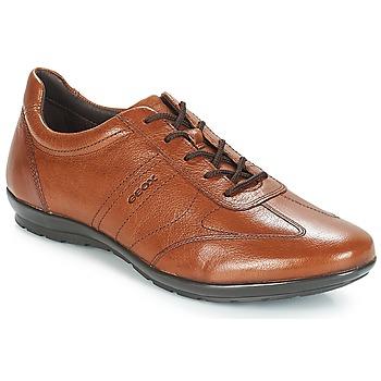 Cipők Férfi Rövid szárú edzőcipők Geox UOMO SYMBOL Barna