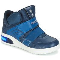 Cipők Fiú Rövid szárú edzőcipők Geox J XLED BOY Tengerész