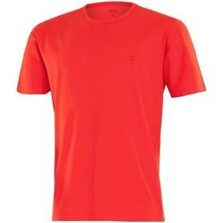 Ruhák Férfi Rövid ujjú pólók Impetus 7304E62 F04 Piros