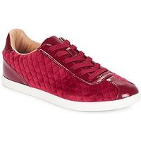 Cipők Női Rövid szárú edzőcipők André VELVET Piros
