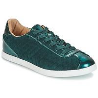 Cipők Női Rövid szárú edzőcipők André VELVET Zöld