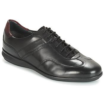 Cipők Férfi Rövid szárú edzőcipők André CAMERINO Fekete