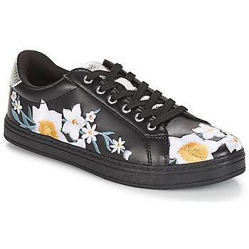 Cipők Női Rövid szárú edzőcipők André COROLLE Fekete