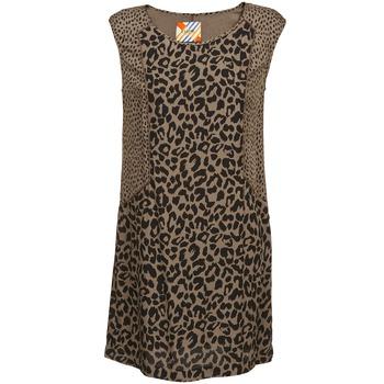 material Női Rövid ruhák Chipie RITA Bézs
