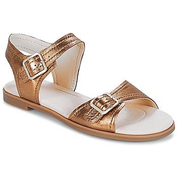 Cipők Női Szandálok / Saruk Clarks Bay Primrose Bronz / Fémes