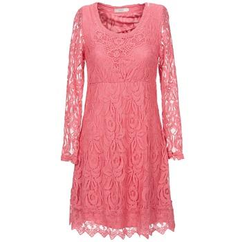 material Női Rövid ruhák Cream ANNEMON LACE Rózsaszín