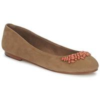 Cipők Női Balerina cipők / babák Ambre Babzoe DUFFY Teve