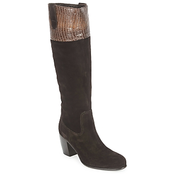 Cipők Női Városi csizmák C.Doux ENZO BOT Barna